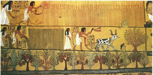 Ancient-Egypt-Harvest.jpg