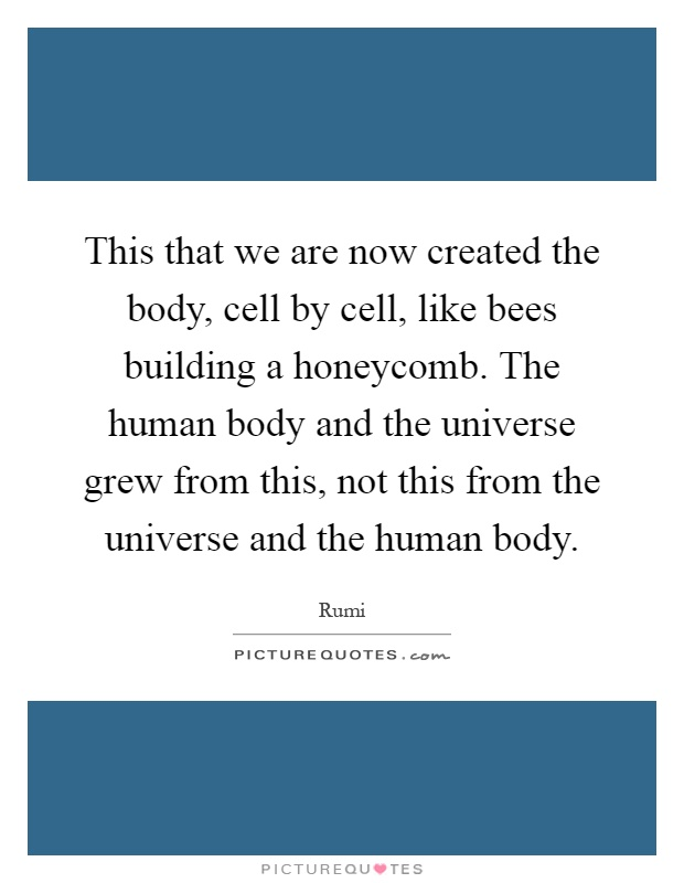 this-that-we-are-now-created-the-body-cell-by-cell-like-bees-building-a-honeycomb-the-human-body-quote-1