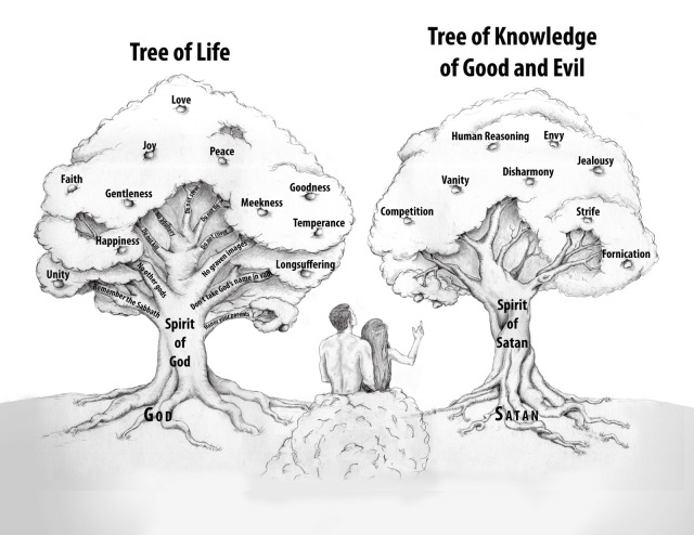 the Tree of Life and the Tree of the Knowledge of Good and Evil